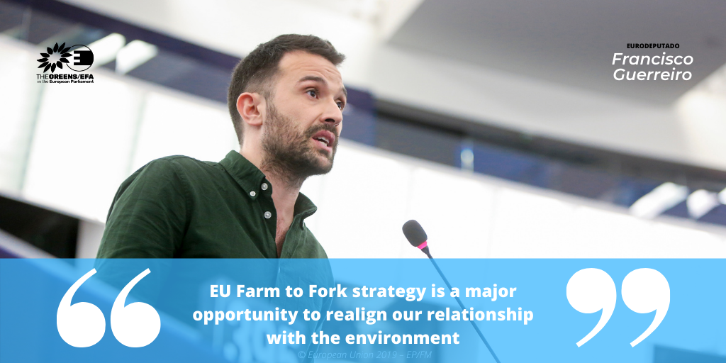 The Parliament Magazine: 'EU Farm to Fork strategy is a major opportunity to realign our relationship with the environment'